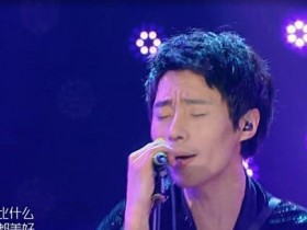 本期《歌手》刘欢应该第二,张芯应该第三,歌手李娜随后