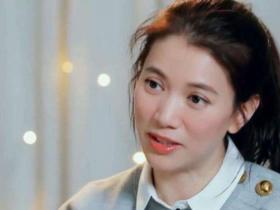 张嘉倪怼采访记者,是情商低还是故意的,看袁咏仪的评价就知道了