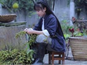 李子柒年入1.6亿 2123家公司的净利润不敌她一个人