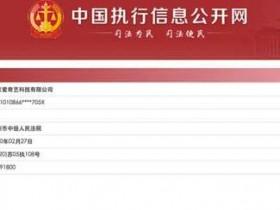 爱奇艺成被执行人 执行标的为30191800元