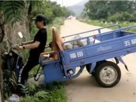 汪峰开三轮摩托车撞树 开惯了豪车却没驾驭好小三轮