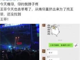 王菲在草莓音乐节把手机蹦丢了
