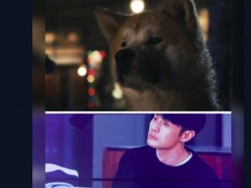 杨丞琳晒李荣浩与柴犬对比图 小眼神和柴犬几乎如出一辙