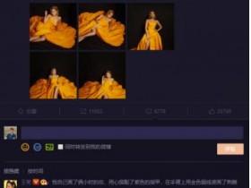 王菊怼自家宣传 对自己红毯造型的宣传不到位
