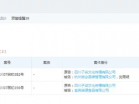 李子柒起诉杭州微念