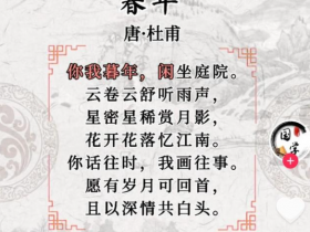 网红诗是杜甫写的?专家:完全无关