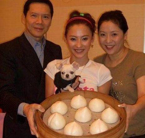 张柏芝生三胎复出,竟被香港大佬起诉,看样子悬了