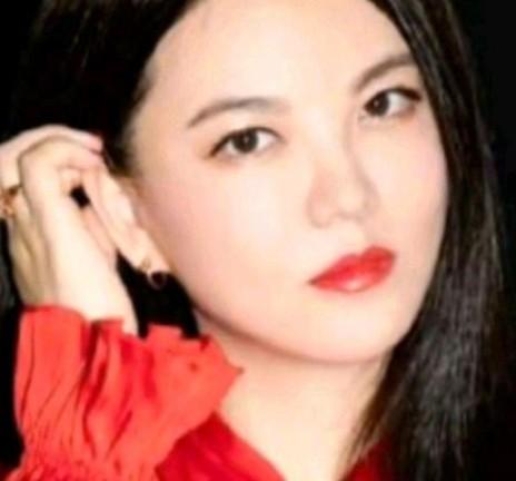李湘发声明回应争议