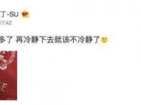 歌手苏诗丁自曝离婚 冷静两年多了