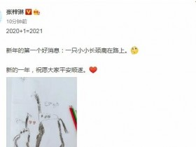 张梓琳宣布怀二胎 晒出一张4岁女儿的简笔画
